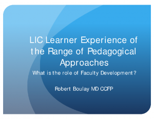 BOULAY-LIC-Learner-Experience